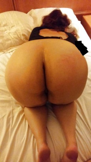 Doina ts escorts in Everett